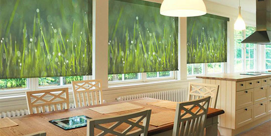 Printed Window Shades Custom Printed Roller Shades For
