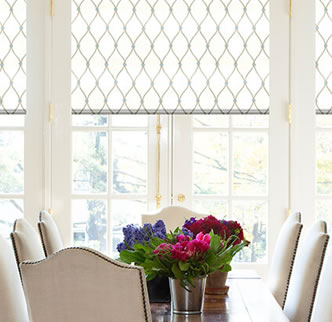 Blindsgalore® Designer Roman Shades: Statement Patterns