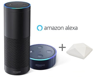 connect to your Amazon Alexa using the NEO hub