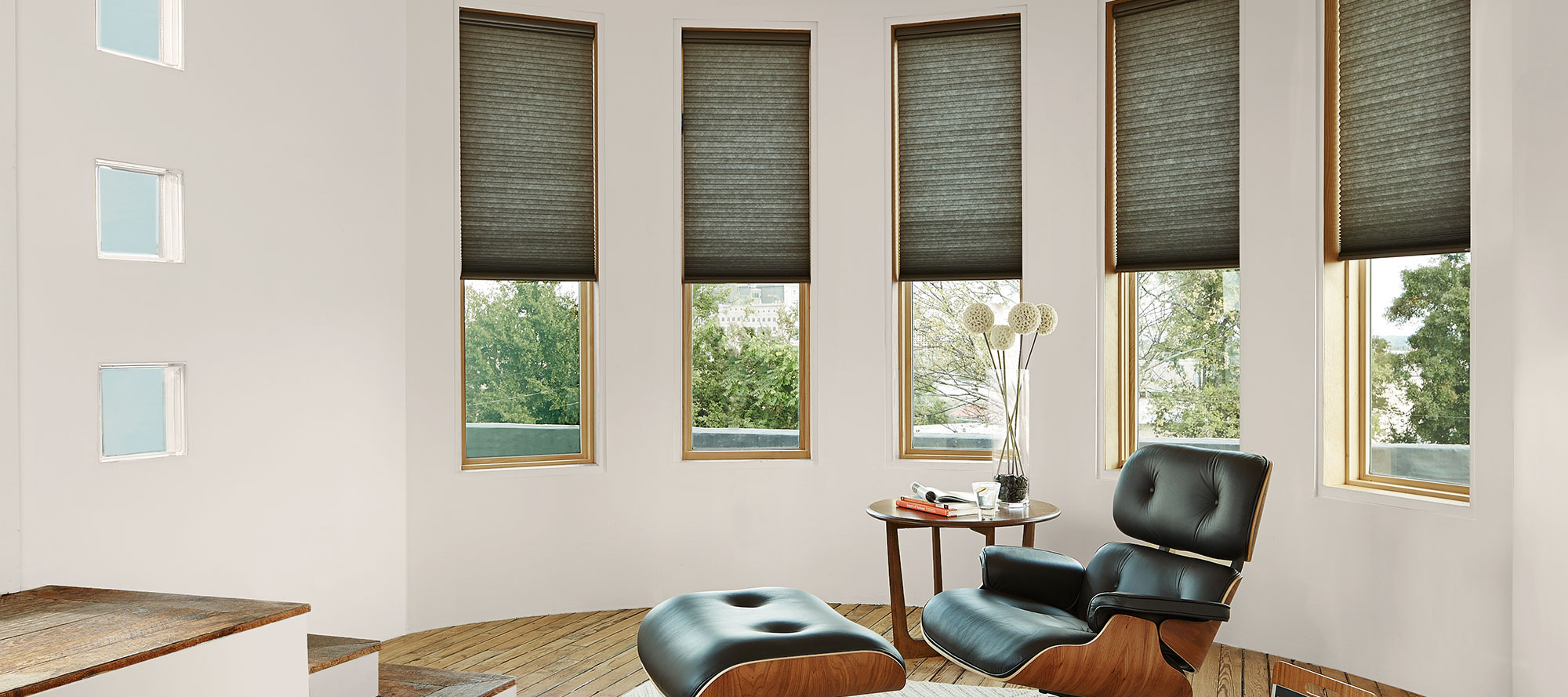 Exterior: Window Coverings, Blinds & Shades