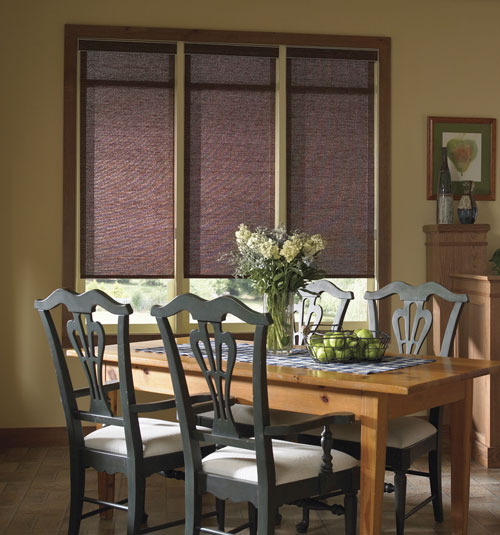 Blindsgalore Envision Roller Shades: Light Filtering Textures & Patterns