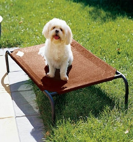 Coolaroo Pet Beds: Small