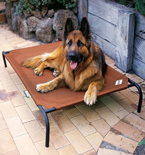 Coolaroo Pet Beds: Shown in Terracotta