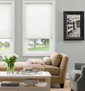 Blindsgalore Classic Cellular Shades: Light Filtering