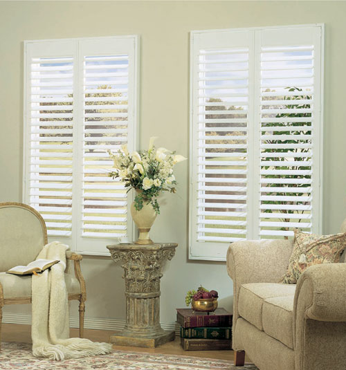 "Blindsgalore 4"" Vinyl Shutters"