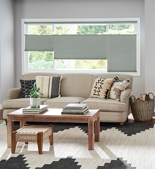 Blindsgalore® Gallery Cellular Shades: Blackout shown in Pathway