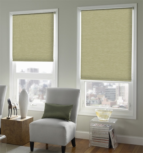 Expressions Roller Shade shown in color Canvas Print - Cactus Green