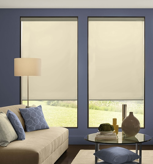 Blindsgalore® Expressions Motorized Roller Shades: Shown in Linen