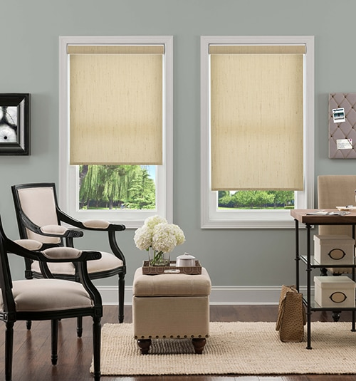 Blindsgalore® Hudson Roller Shades: Shown in Raffia