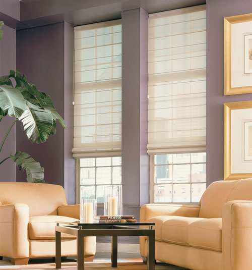 Comfortex® Envision Roman Shades: Light Filtering Solids