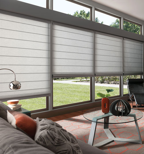 Comfortex Envision Roman Shades: Light Filtering Textures & Patterns