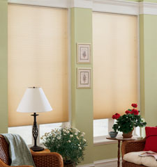 "Blindsgalore® Cellular Shades: 3/8"" Double Cell Traditions"