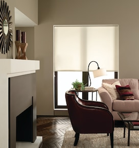 Blindsgalore Roller Shade: Newport Light Filtering