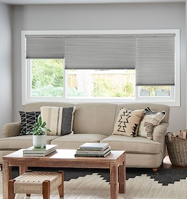 Blindsgalore Gallery Cellular Shades: Blackout