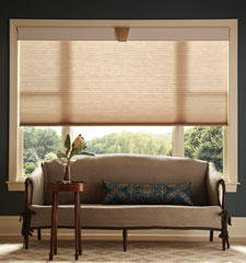"CrystalPleat® 3/8"" Double Cell Cellular Shade: DayDream shown in Tawny"