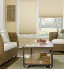 "Bali® DiamondCell® 3/8"" Double Cell Cellular Shades: Storm shown in Whisper"
