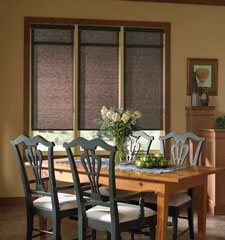 Comfortex® Envision® Roller Shades: Polynesian Sands shown in Tiki Brown
