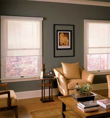 Comfortex® Envision® Solar Shades: Sheerweave 2390 shown in Oyster Beige