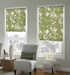 Blindsgalore® Expressions Solar Shade: Botanical Patterns shown in Spring Vine Moss